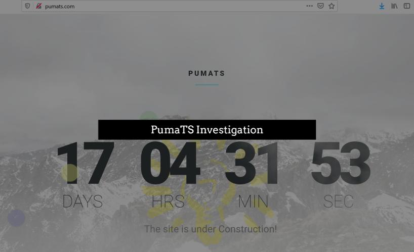 PumaTS website vanished while FinTelegram investigates