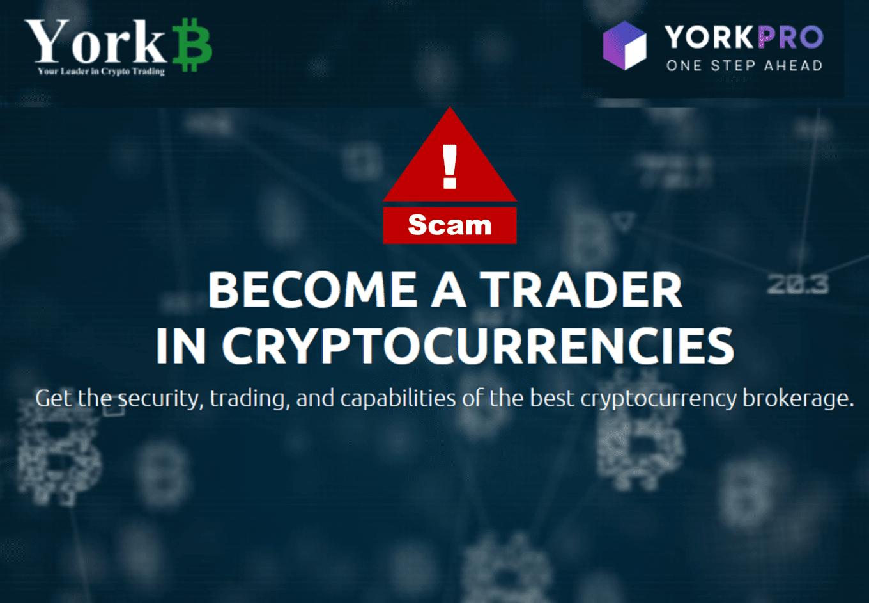 investor warning against YorkPro and YorkBTC broker scams